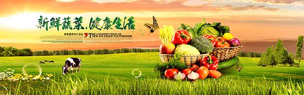 广告海报素材,蔬菜海报大图,绿色蔬菜海报,健康蔬菜海报,水果蔬菜宣传