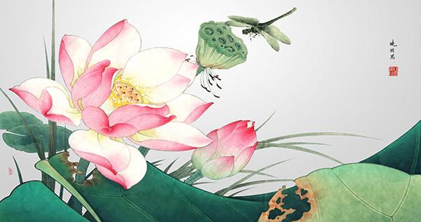 荷花荷叶蜻蜓简笔画