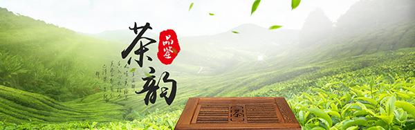 茶叶文化 矢量图