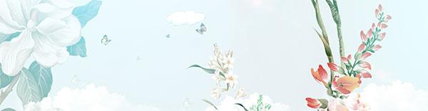 蝴蝶,唯美,淡雅,小清新,海报,背景,海报背景素材,海报背景图片为1920*