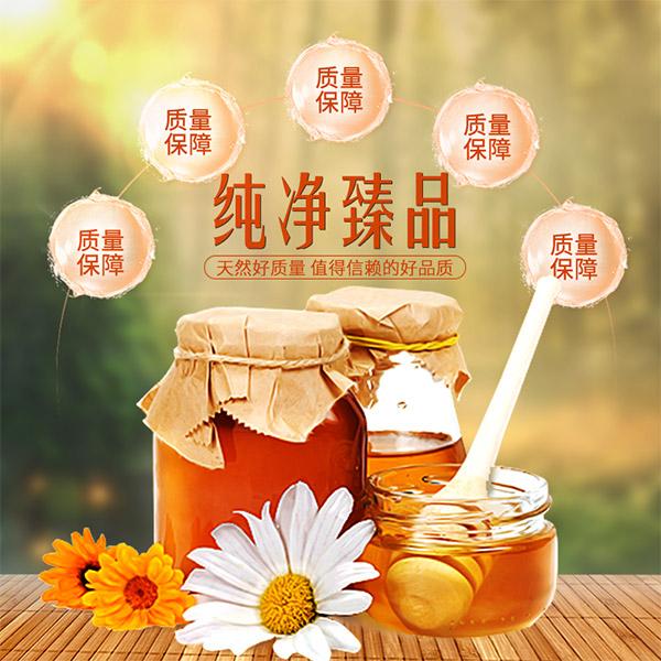 淘宝蜂蜜主图模板下载,纯净臻品,蜂蜜,质量保障,主图,直通车,淘宝主图图片