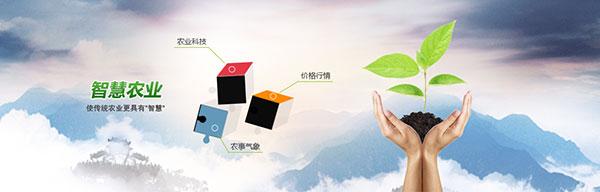 绿色环保,农业科技,手,叶子,正方形,互联网 ,智慧农业,绿色环保,手