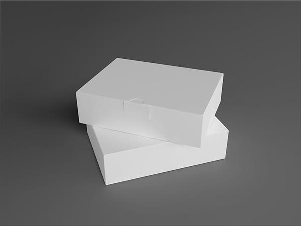 白色盒子样机
