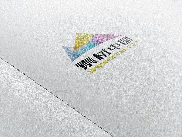 磨砂纹理logo样机