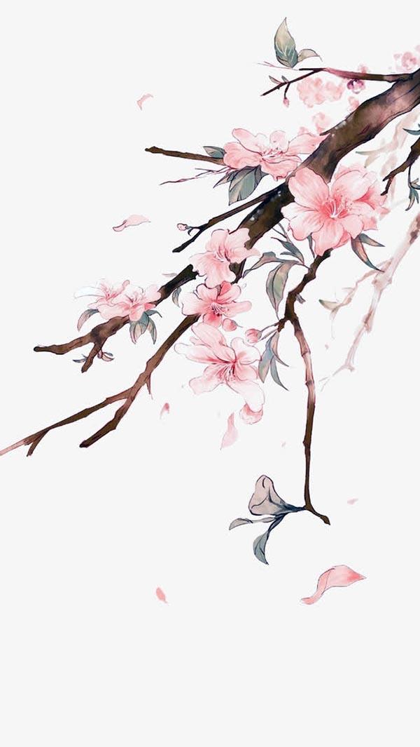 素材,古风桃花,桃花,粉色,中国风,水彩,png,658x1169px,72dpi 下载