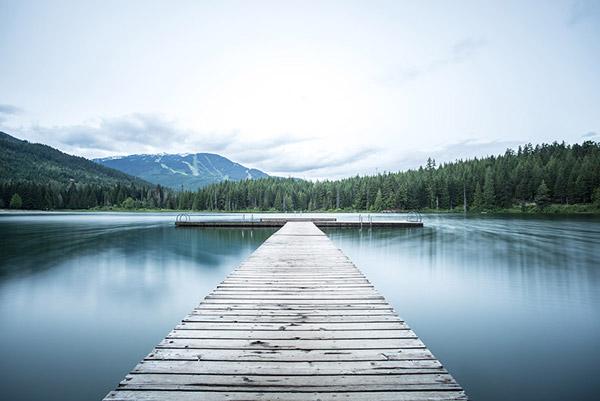 湖面森林图片