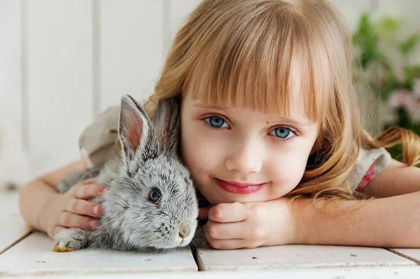 抱兔子的小女孩