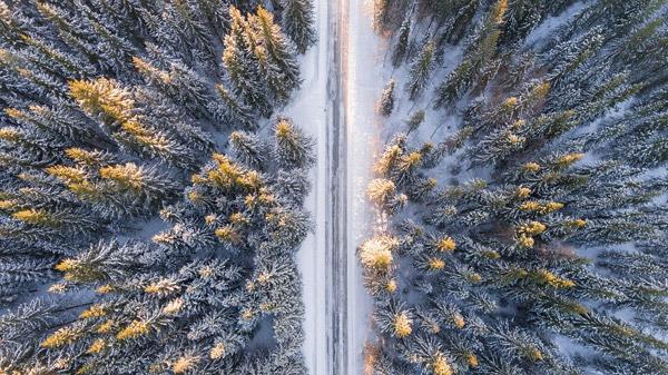 俯视森林雪景