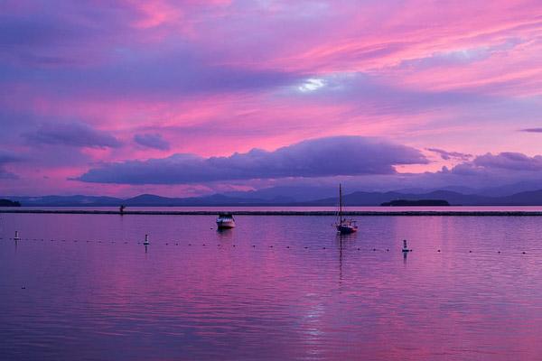 紫色调水景