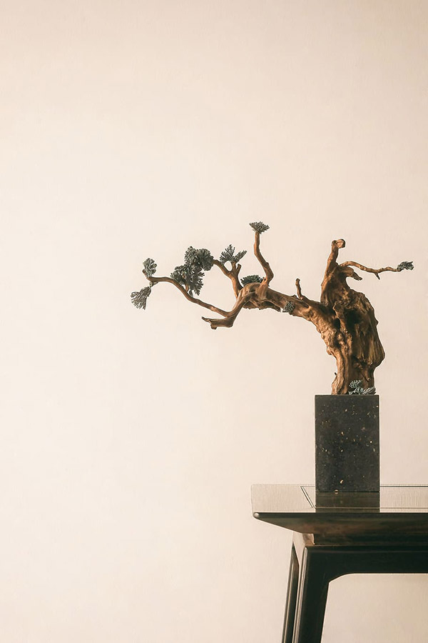 盆景树雕塑图片