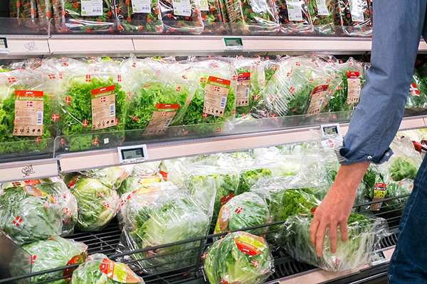 超市蔬菜货架