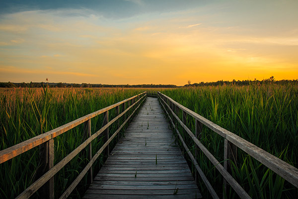 日落田园风景