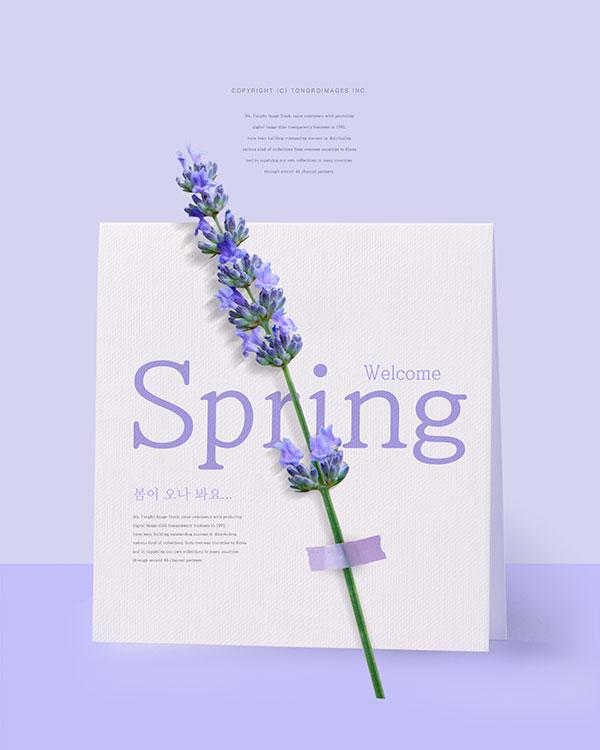 唯美紫色春天海报