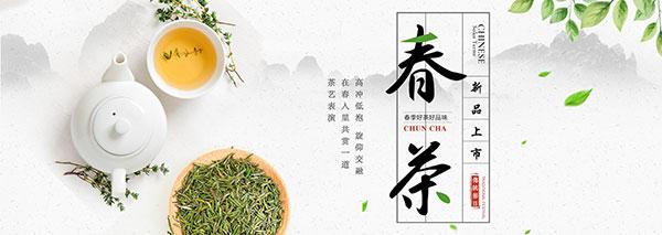 绿茶茶叶促销