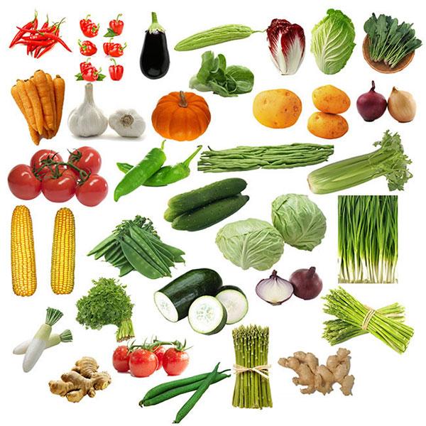 透明背景蔬菜