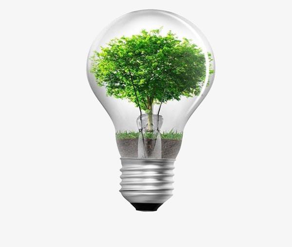 创意灯泡绿树