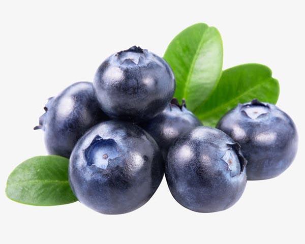 新鲜的水果蓝莓