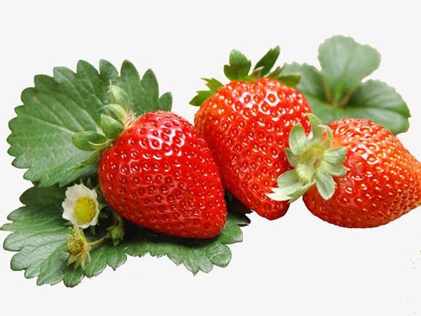 新鲜水果草莓