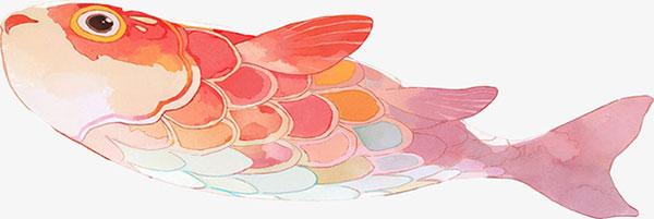 水彩鱼插画