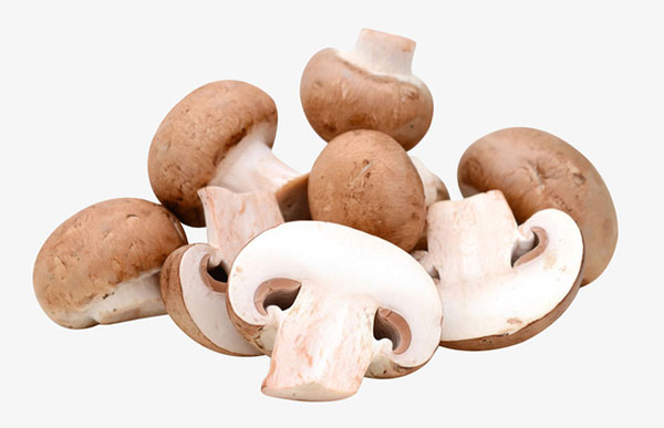 新鲜的香菇