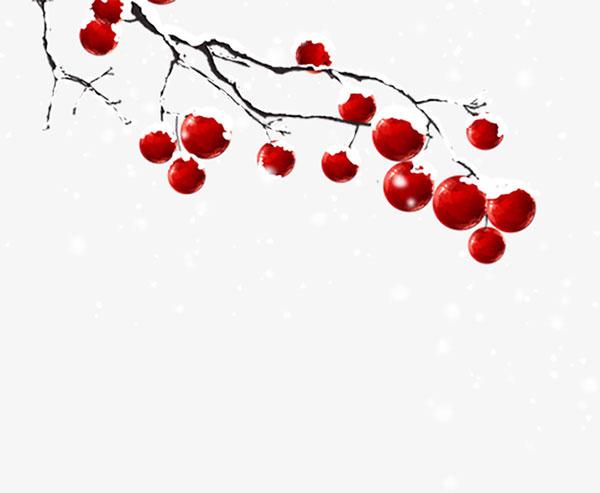 冬天树枝装饰