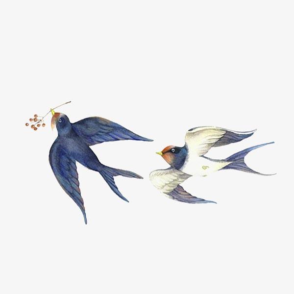 衔着果子的小鸟