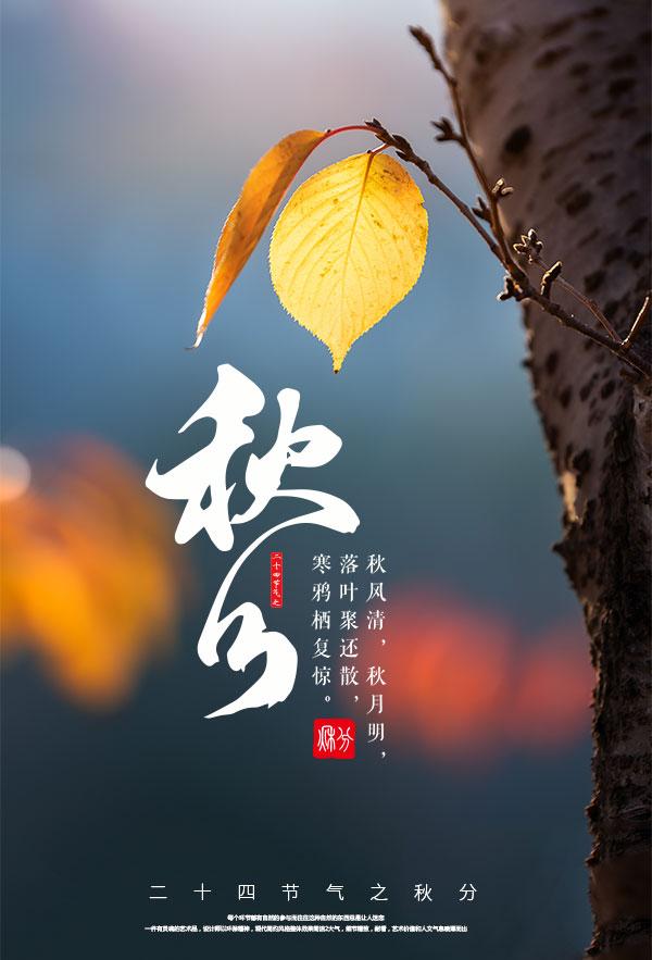 金秋秋分时节海报