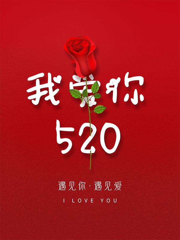 520遇见你遇见爱