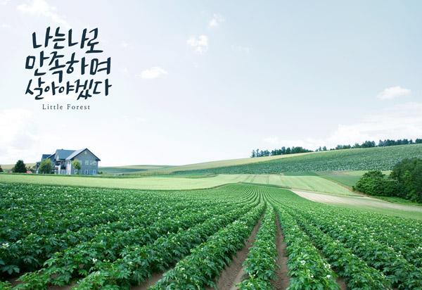 自然清新生活海报5