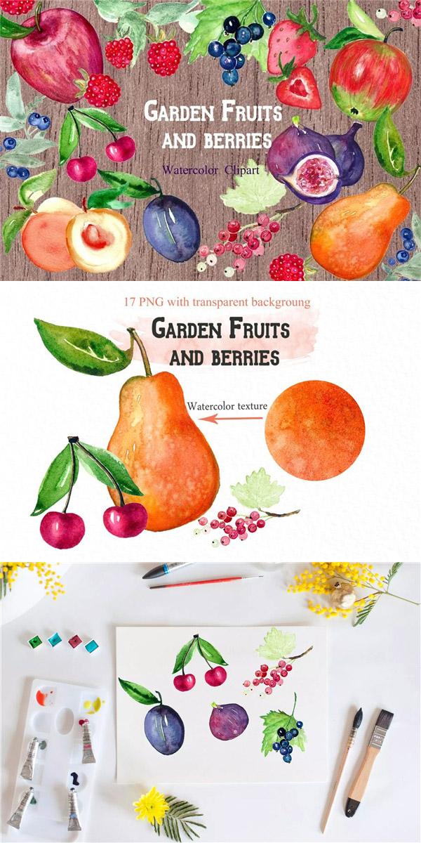水果浆果水彩剪贴画