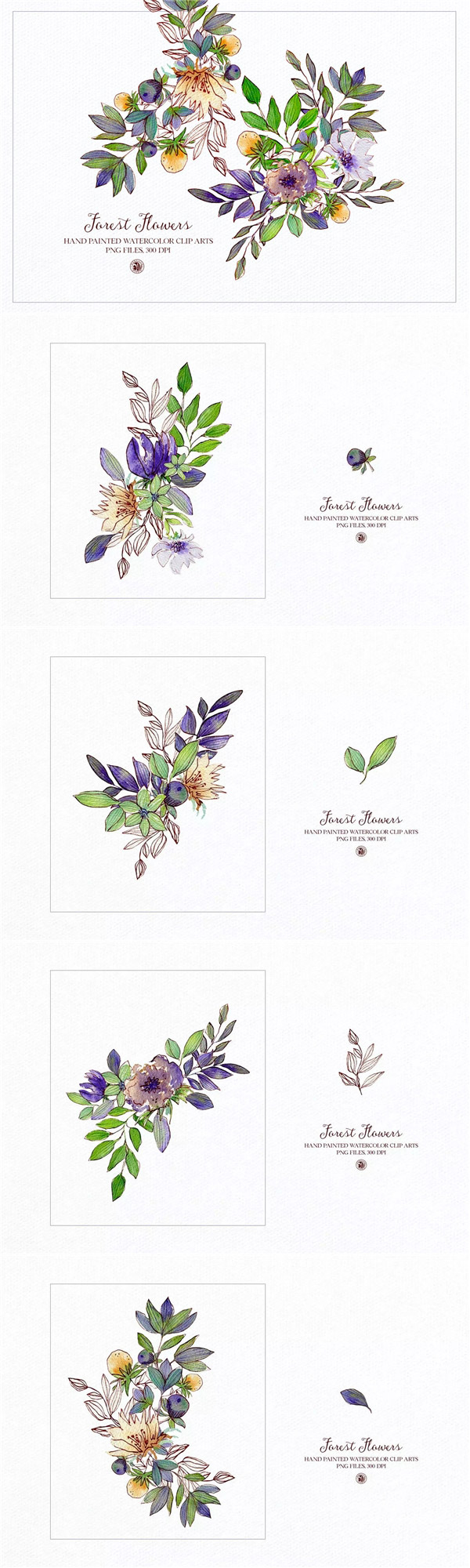 水墨水彩水粉植物插画