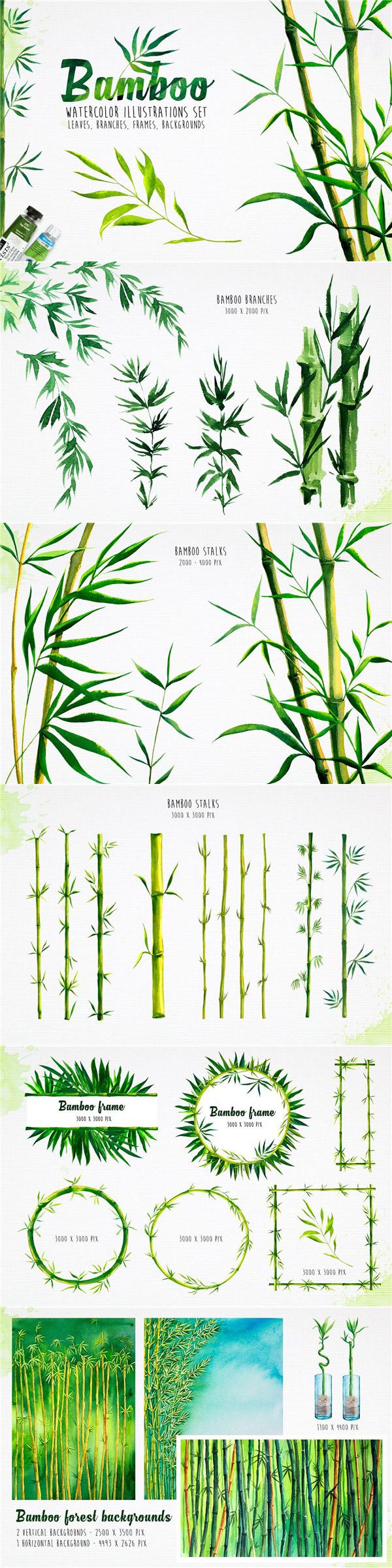 绿色竹子手绘插画