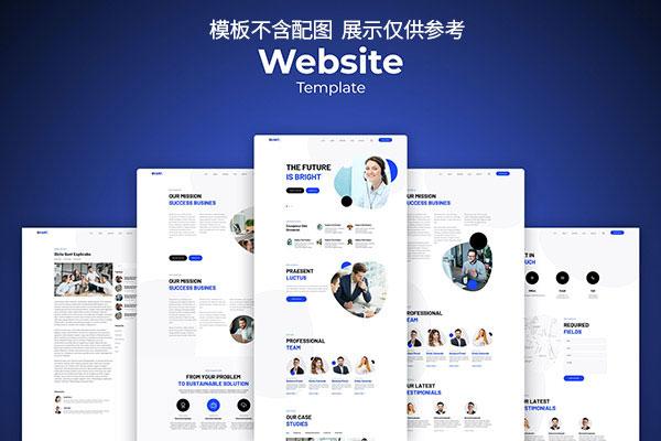 商业顾问服务网站UI