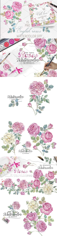 手绘水彩玫瑰花卉