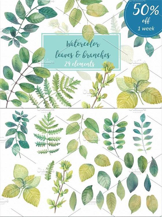 水彩树叶和树枝插画