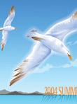 韩国矢量-海鸥