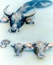极致美景-水牛