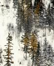 极致美景-冬季乡