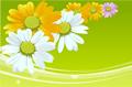 各色花朵背景