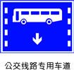 交通指示标志-公交路线专用