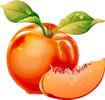 矢量水果_1