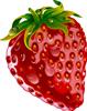 矢量水果_3