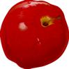 矢量水果_5