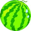 矢量水果_14