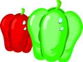 矢量水果_21