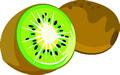 矢量水果_28