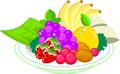 矢量水果_31