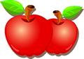 矢量水果_45