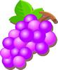 矢量水果_48
