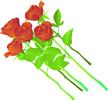 矢量玫瑰花_6